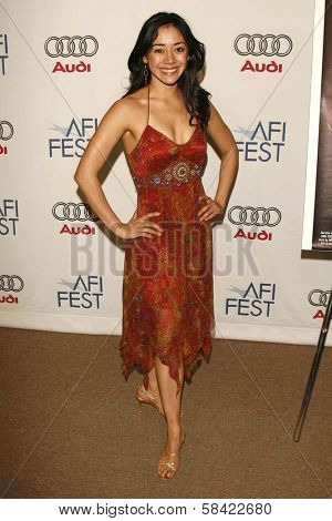HOLLYWOOD - NOVEMBER 10: Aimee Garcia at the AFI Fest 2006 Screening of