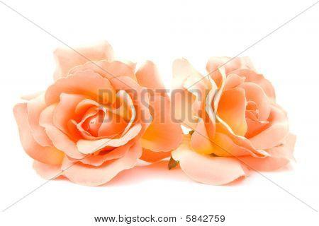 Silk Orange Roses