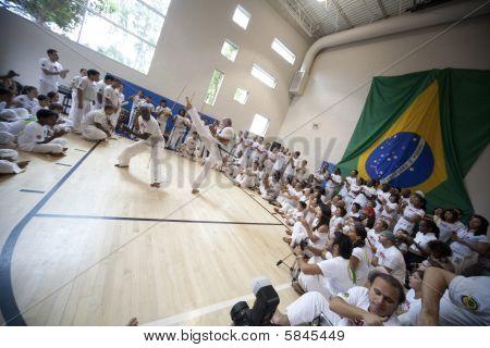 Capoeira Festival 6