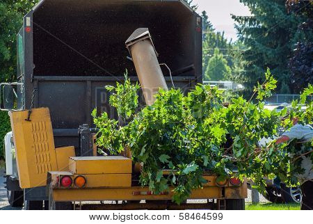 Wood Chipper Shredding A Tree Into A Truck
