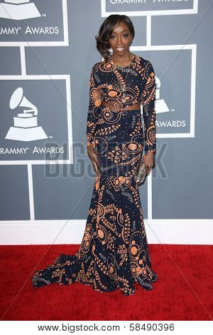 Estelle at the 55th Annual GRAMMY Awards, Staples Center, Los Angeles, CA 02-10-13
