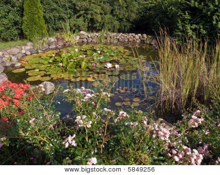 Beautiful Classical Garden Fish Pond