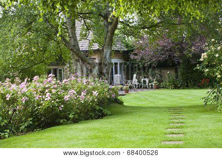 Cottage garden in summer