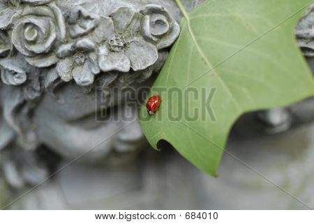 A perfect lady bug meets face to face with a cherub poster