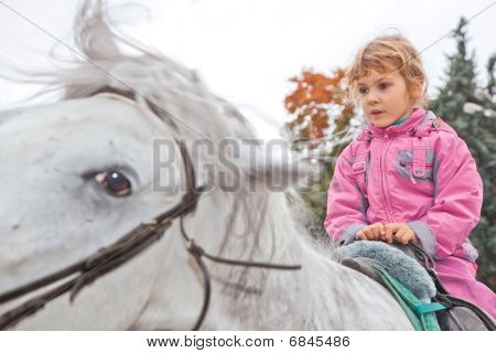 little girl riding horse and looking aside poster