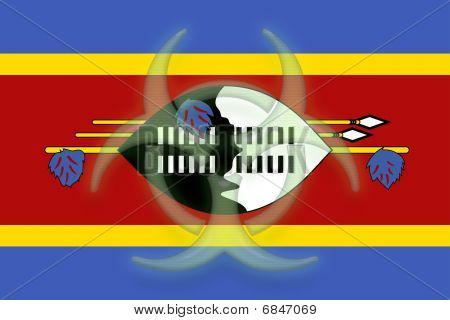 Flag Of Swaziland Health Warning