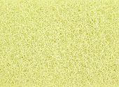Closeup detail of abstract yellow sponge texture for background poster