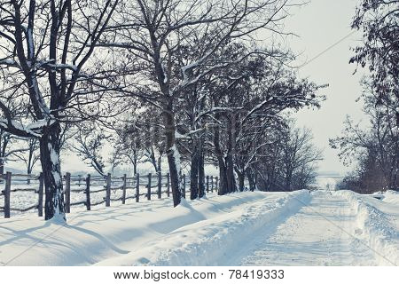 Snowy road by the fence on a sunny day