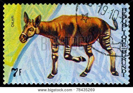 Vintage  Postage Stamp. Animals Burundi, Okapi.