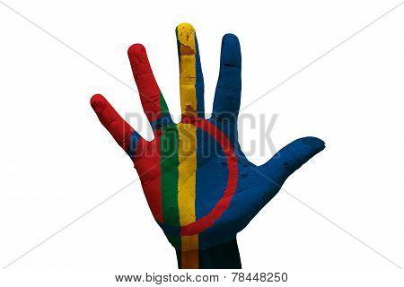 Palm Flag Sami