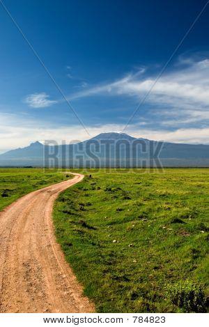 Road to Kilimanjaro