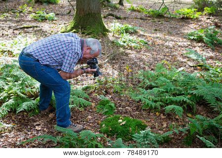 Senior Man Photographing Forest Life