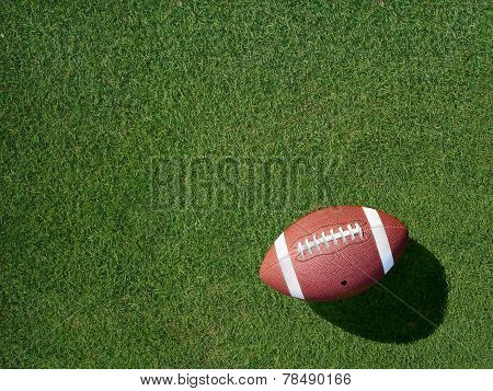 Football On Sports Turf Grass Angled Left