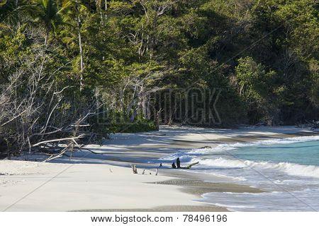 Trunk Bay, Virgin Islands, with no people