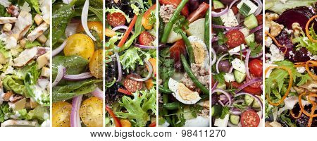 Collage of healthy salads.  Includes chicken caesar, spinach, garden, nicoisse, greek and beetroot and walnut.