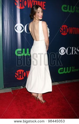 LOS ANGELES - AUG 10:  Caitlin FitzGerald at the CBS TCA Summer 2015 Party at the Pacific Design Center on August 10, 2015 in West Hollywood, CA