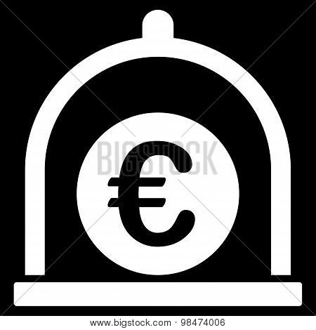 Euro standard icon from Business Bicolor Set