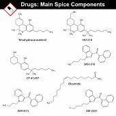Main spice compounds - synthetic cannabinoids, structural chemical formulas of molecular structure, 2d vector, isolated on white background, eps 8 poster