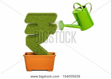 Watering can water grassy rupee symbol. Money plant concept 3D rendering