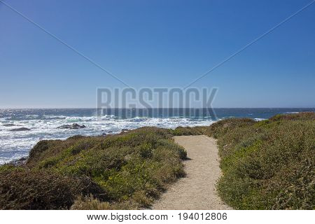 View of path along coast of 17 mile drive leading to ocean Pebble Beach California
