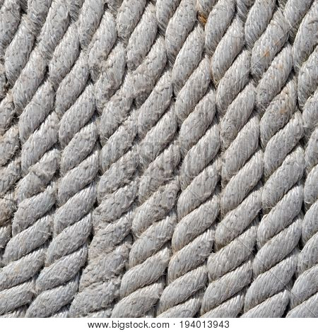 Tightly coiled fishing rope close up.