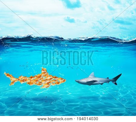 Big shark made of goldfishes faces a shark. Concept of unity is strenght, teamwork and partnership