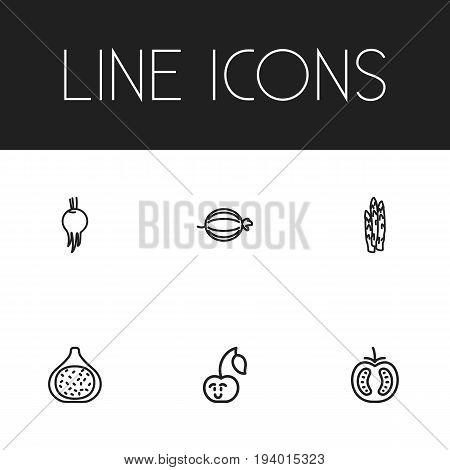 Set Of 6 Editable Cookware Icons. Includes Symbols Such As Fig, Asparagus, Veggie And More. Can Be Used For Web, Mobile, UI And Infographic Design.