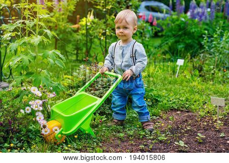 One year cute child in summer garden with wheelbarrow