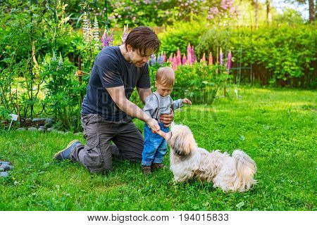 Father and son with shih tzu dog in summer green garden