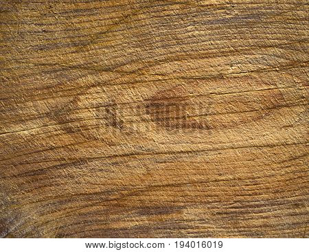 Natural old wood texture.