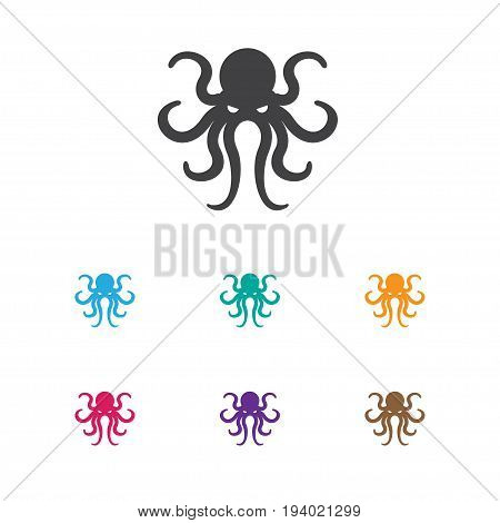 Vector Illustration Of Animal Symbol On Octopus Icon. Premium Quality Isolated Tentacle Element In Trendy Flat Style.