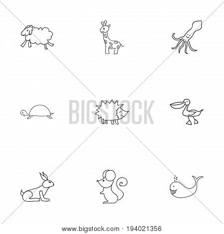 Set Of 9 Editable Zoology Icons. Includes Symbols Such As Cachalot, Tall Animal, Urchin And More. Can Be Used For Web, Mobile, UI And Infographic Design.