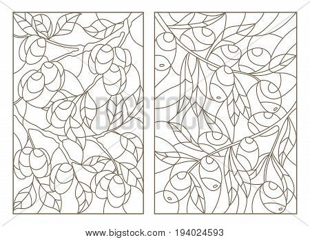 Set contour illustrations of stained glass the branch of a olive tree and a plum tree with ripe fruits