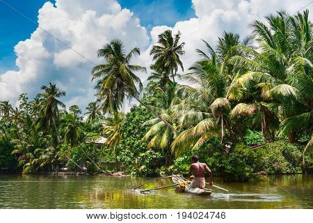 Tropical thickets mangrove forest on the island of Sri Lanka. Traditional fisherman in dugout canoe in Sri Lanka.