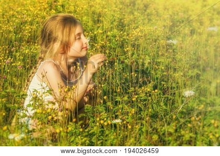 Girl with chamomile on brightly lit summer meadow