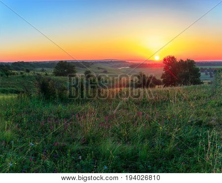 Landscape from the beginning of day in the summer. Holmity area still twilight. And over this abundance of herbs and separate trees there is a bright sun. Russia Krasnodar Krai Kuban.