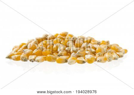 Heap of dried corn isolated on white background.