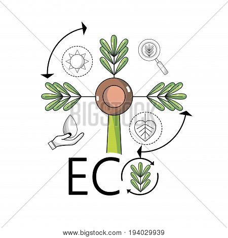 plant with branches and leaves to ecology conservation vector illustration