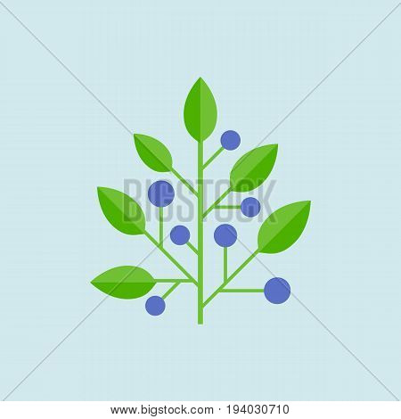 simple vector blueberry, blueberry icon, flat design