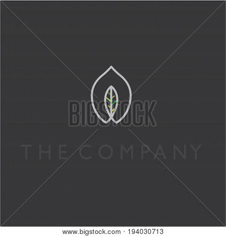 leaf deas design vector illustration on background