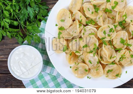 Homemade Meat Dumplings Of Wholemeal Flour