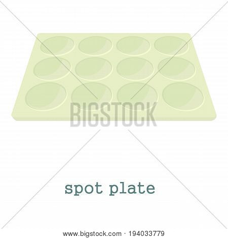 Spot plate icon. Cartoon illustration of spot plate vector icon for web isolated on white background
