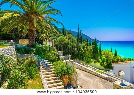 View of palm tree and house in Agios Georgios Pagon village Corfu island Greece