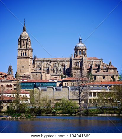 New Cathedral In Salamanca against Blue Sky Outdoors. Castile and Leon Spain