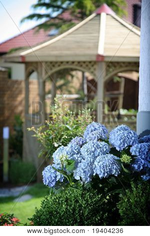 Details of luxurious garden in summertime.