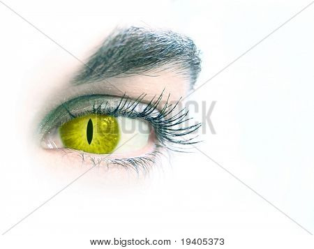 Close up of an eye of the woman-cat