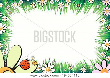 Photo frame summer. Vector illustration for your design. Ladybugs, insects on the grass with daisies. Horizontal sheet orientation