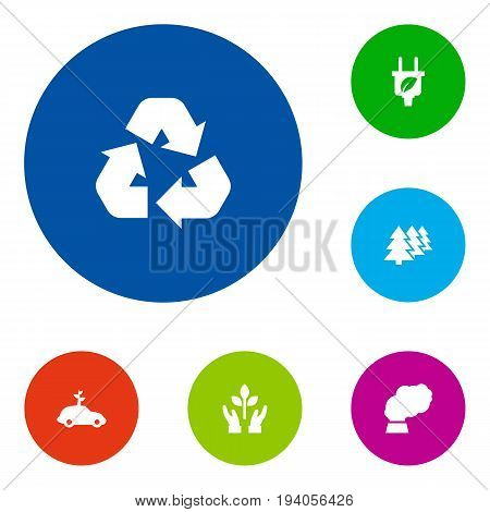 Set Of 6 Bio Icons Set.Collection Of Reforestation, Cleaning, Leaf And Other Elements.