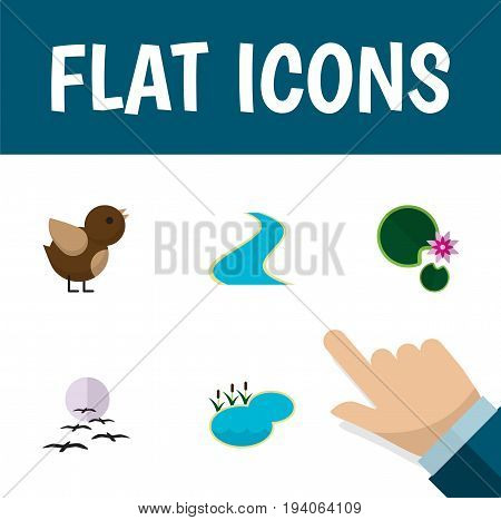 Flat Icon Bio Set Of Tributary, Bird, Gull And Other Vector Objects. Also Includes Moon, Lily, River Elements.