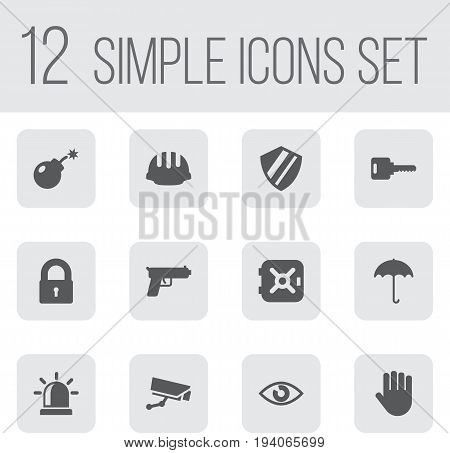 Set Of 12 Procuring Icons Set.Collection Of Insurance, Protection, Key And Other Elements.